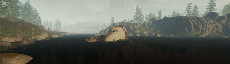 Cockpit in The Forest